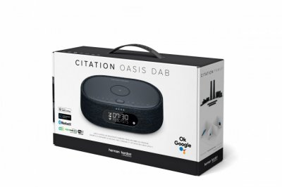 Акустична система Harman Kardon Citation Oasis Black (HKCITAOASISBLKEU)