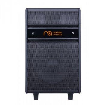 Акустична система Maximum Acoustics MusicBAND.100 (22-61-1-2)