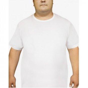 Чоловіча футболка Oztas 1037-A біла 100% бавовна кулір