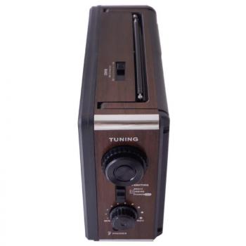 Радиоприемник GOLON RX-9966UAR сетевой и аккумуляторный портативный всеволновой с телескопической антенной цифровое Мини радио с USB mp3, WMA беспроводной FM/AM