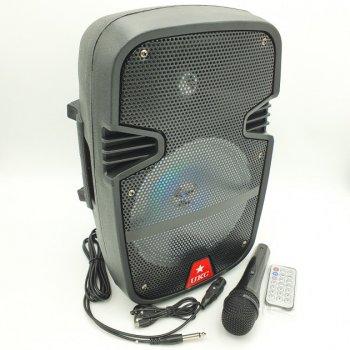 Акустична система UKC акумуляторна бездротова Bluetooth колонка з провідним мікрофоном караоке комбо підсилювач пульт Чорна (RE-258)