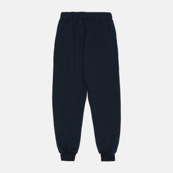 Спортивные штаны Одягайко 555157 Темно-синие