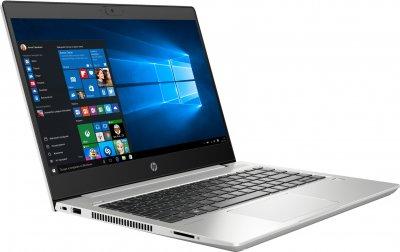 Ноутбук HP ProBook 445 G7 (2D277EA) Pike Silver