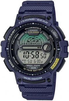 Чоловічий годинник CASIO WS-1200H-2AVEF