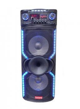 "Колонка аккумуляторная Sky Sound SS-1010C/ 2x10""/ 2x100W/2 микрофона/ BT/ SD+USB+FM/ LED"