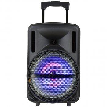 Автономная активная акустическая система BiG 200BAT два радио микрофона, караоке
