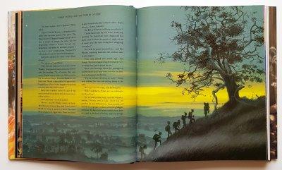 Гаррі Поттер і Келих Вогню. Ілюстрована - Джоан Роулінг (9786175851821)
