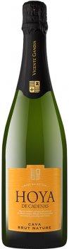 Вино игристое Hoya de Cadenas Cava Brut Nature белое брют 0.75 л 11.5% (8410310605994)