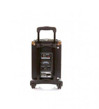 Активная переносная акустическая система Powerbeat B78