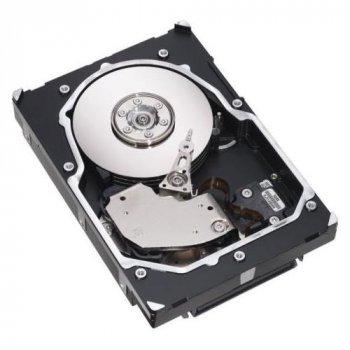 Жорсткий диск NetApp 300GB 15K FC (X279A) Refurbished