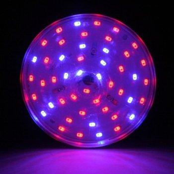 LED фітолампи Ledmax E27 16 Вт BULB16F R: B = 4: 2 для рослин біколор червоно-синє світло