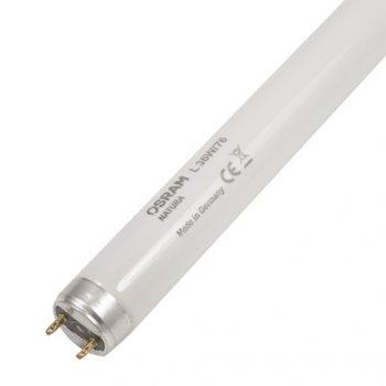 Лампа люмінесцентна OSRAM T8 NATURA L 36W для м'ясних вітрин (10542266)