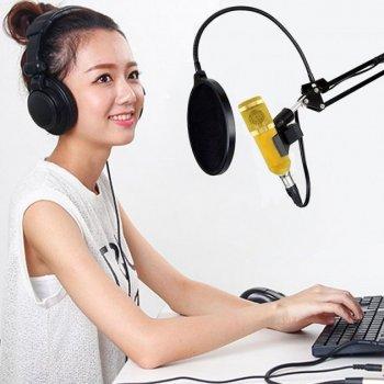 Студійний конденсаторний мікрофон Music D. J. M 800U зі стійкою і вітрозахистом Золотий