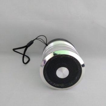 Беспроводная колонка WS-887 с функцией Bluetooth (USB, TF, mini USB 3.5 мм AUX) Серая (11049)