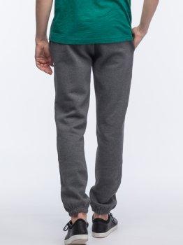 Спортивные штаны Lacoste XH7611-050 Gray