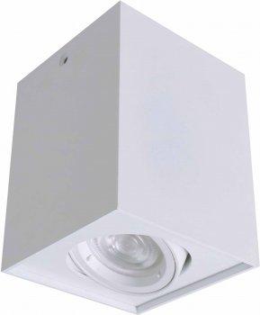 Світильник стельовий DELUX LDL-38 білий
