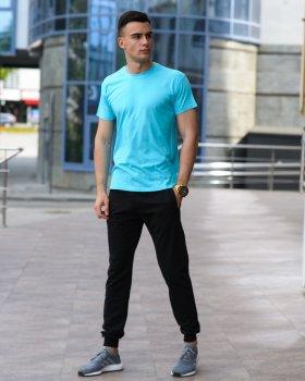 Мужской комплект футболка и спортивные штаны WB бирюзово-черный