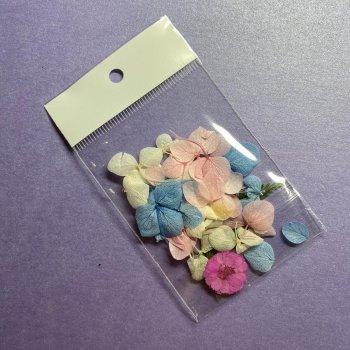 Декор для дизайну нігтів Сухоцвіти