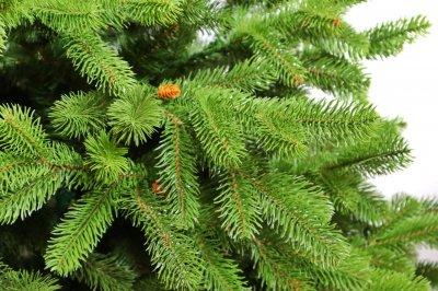 Штучна ялинка Christmas Soul Адель 1.8 м Світло-зелений