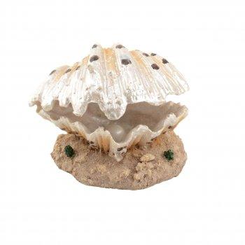 """Декорация Tetradon """"Морская раковина с жемчужиной"""" 9.3*9*6.5 см JQ018S"""