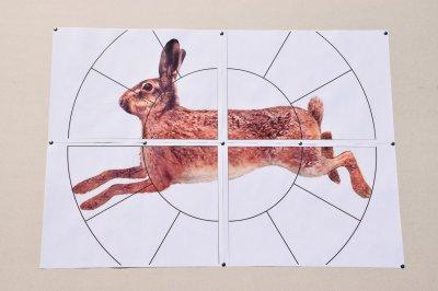 """Мішень Сателіт 16-ти дольная """"Заєць"""" А1(А3) 48 аркушів колір (125)"""