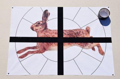 """Мішень Сателіт 16-ти дольная """"Заєць"""" А1(А3) 96 аркушів колір (126)"""