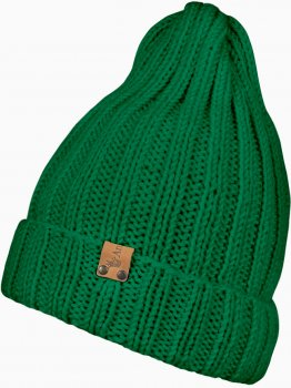 Зимняя шапка Anmerino Tykovka-402_5 50-52 см Зеленая (ROZ6205041309)