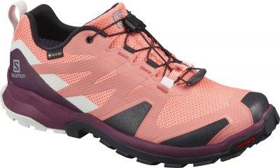 Кросівки SALOMON XA ROGG GTX W рожевий s411120
