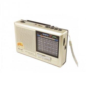 Акустична система Golon акумуляторний радіоприймач колонка з FM радіо з ліхтариком MP3 USB SD Золотистий (RX-321)