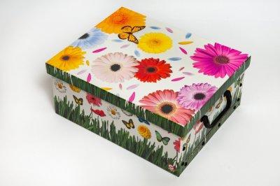 Коробка картонная с пластиковыми ручками Evoluzione 40 х 50 х 25 см Герберы и Бабочки (24)