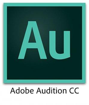 Adobe Audition for enterprise. Ліцензії для комерційних організацій, річна передплата на одного користувача в межах замовлення від 1 до 9 (65297886BA01A12)
