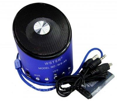 Портативна Колонка WSTER WS-A9 з MP3, USB, FM-радіо Blue (flo1017)