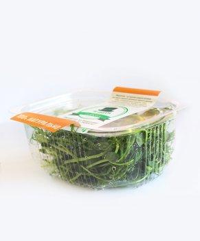 Мікрозелень гороху MR Green 100 г(30002)