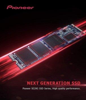 Pioneer APS-SE20G 256GB M. 2 NVMe 1.3 (APS-SE20G-256)