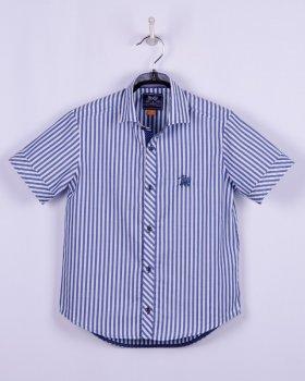Сорочка BoGi casual Синьо-біла смужка (002.012.0201.03)