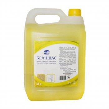Бланидас - універсальний миючий засіб для водостійких поверхонь, 5 л