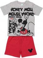Піжама (футболка + шорти) Idexe '12M Grigio Melange (640649530094Z) - зображення 1