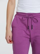 Спортивні штани Piazza Italia 39326-51295 M Amethyst (2039326002045) - зображення 3