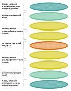 Солнцезащитные поляризационные очки Polaroid PLD PLD 6126/S 08A56M9 (PLD6126/S-08A-M9) - изображение 4
