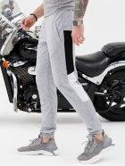 Спортивные штаны ISSA PLUS SG-20_серый XXL Серые (issa2001605697174) - изображение 3