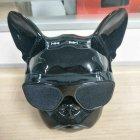 Портативная безпроводная дизайнерская Bluetooth колонка + радио Aerobull DOG Head Mini голова бульдога Черный - изображение 5
