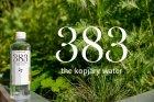 Упаковка минеральной негазированной воды 383 1,149 л * 6 бутылок 5999887276026 - изображение 7