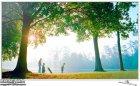 Телевизор Samsung UE32H6410 - изображение 1
