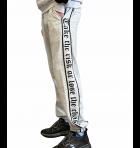 Спортивные штаны мужские 7030 MMC св,-серый L - изображение 3